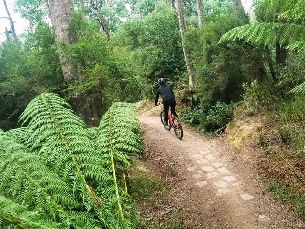 Mountain Biking in Derby