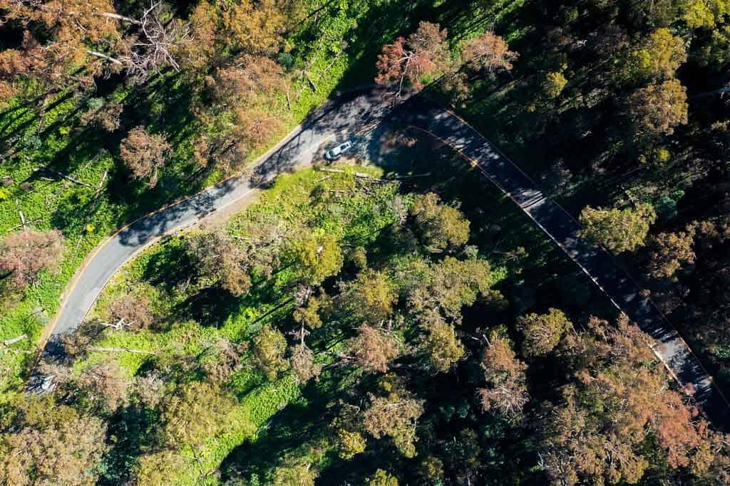 Twisty Alpine Way Roads