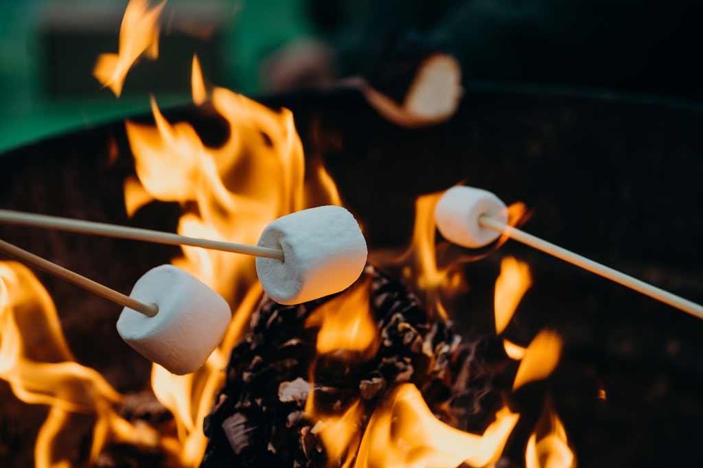 Roasting Marshmallows Best Portable Propane Fire Pit